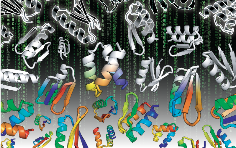 Massive Parallel Protein Design